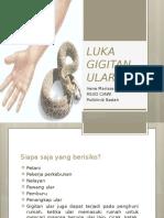 216764320-LUKA-GIGITAN-ULAR-ppt.pptx