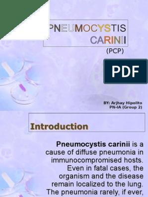 Pneumocystis Carinii | Microbiology | Epidemiology