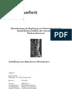 Diplomarbeit Hödl Reinhard