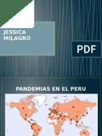 Pandemia Elaboracion Rosado Jessica