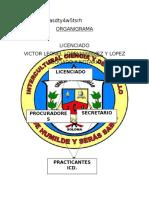 Organigrama Icd