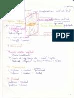 55758395 Cursurile de Anatomie Ale Doctorului Niculescu Topografie an I MG