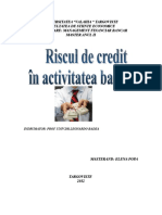 documents.tips_riscul-de-credit-in-activitatea-bancara.doc