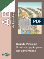ABC-como Plantar Gandu Petrolina