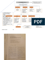 7.8 Examen de Mucosa 4.1