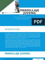 Pandillaje juvenil en Perú
