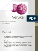 Veruka.pptx