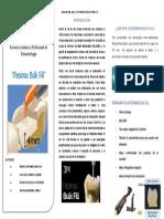 Triptico Resinas Bulk Fill (1)