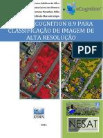 Ecognition - Livro Final