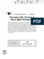 Pervasive BI - Driving a More Agile Enterprise
