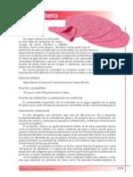 Composición nutricional mortadela.pdf