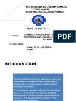 Presentación de Perfil de Proyecto