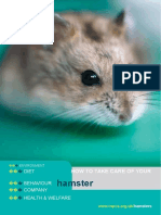 P10-How-to-take-care-of-your-hamster-web.doc