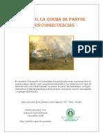 El_Fuego_la_Quema_de_Pasto_y...pdf