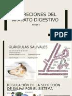Secreciones Del Aparato Digestivo (1)