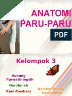 263666367-anatomi-paru-paru.ppt