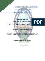Ciclo-biogeoquímico-cloro