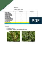 Tugas Ekologi Perhitungan Biodiversitas Praditya (13061)