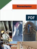 P4 - Ergo - Biomechanics.pdf