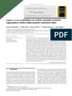 Impact of Ink Formulation on Carbon Nano