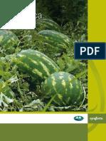 Povrce_Bostani_Katalog2012.pdf
