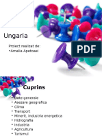 Apetroaei Amalia Ungaria