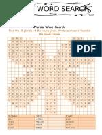 36. PUZZLE - Irregular plurals.docx