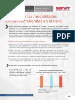 Desafios de Las Modalidades Formativas Laborales Peru