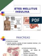 Diabetes Melitus Insulina Vio 1 Fset16