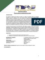 INDUSTRIAS CÁRNICAS PRACTICA NRO 05