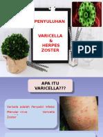 Penyuluhan Varicella Herpes Zoster