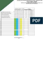 Copia de Hoja Modelo Para Calificar (209534)