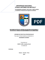 Informe de Prácticas Profesionales.pdf