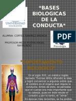 basesbiologicasdelaconducta-RESUMEN