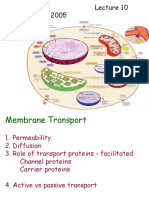 10 Membrane Transport 9 21 05