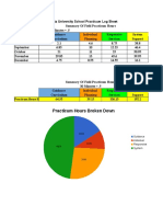 summary of practicum hours broken down 1