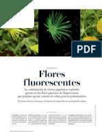 10 Flores Fluorescentes