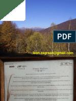 s1c1 N F Z Curs introductiv.pdf
