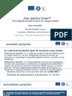 NEETs_AP1_prezentare_9.12.16