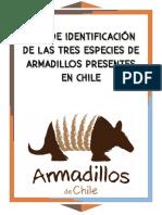 Guía de Identificación de Las Tres Especies de Armadillos Presentes en Chile