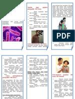 leaflet tbc - pkm ancol.doc
