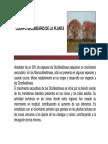 Cuerpo secundario -  botánica morfológica - FAUBA
