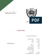 د پشتونو نسلی سیڑنہ