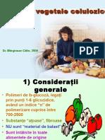 04 Fibrele Vegetale Celulozice.9