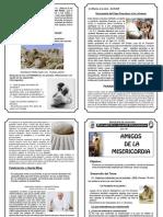 Amigos de La Misericordia PDF
