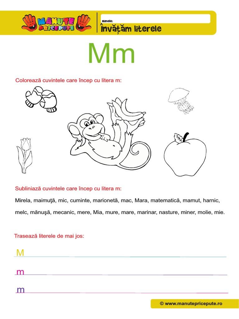 M 006 Litere Mici De Tiparpdf