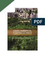 SILVEIRA - Dano Ambiental e Gestão Do Risco