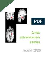 P4. Correlats Anatomofuncionals de La Memoria