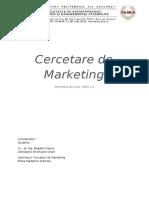 Cercetari Marketing Tema 2