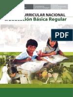 dcn_2009 -1.pdf